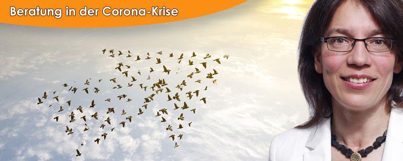 Corona-Krise Beratungsförderung